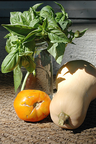 tomato_basil_butternut