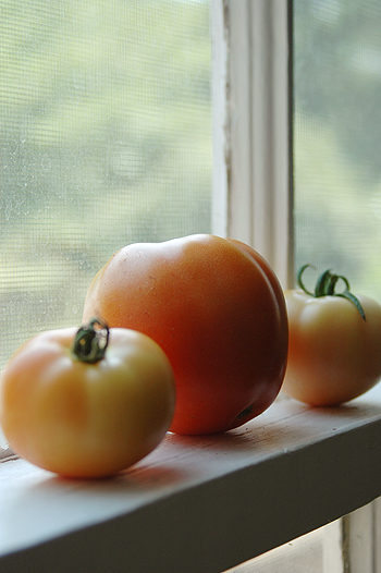 homegrown_tomatoes